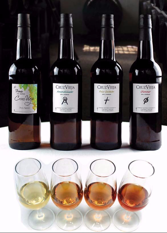 gama-vinos-cruz-vieja-e1506450608883.jpg