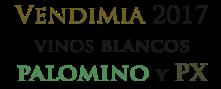logo-palomino